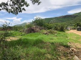 Foto de terreno habitacional en venta en la trinidad 1, la trinidad, tlalixtac de cabrera, oaxaca, 0 No. 01