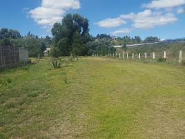 Foto de terreno habitacional en venta en  , la trinidad tepehitec, tlaxcala, tlaxcala, 0 No. 01