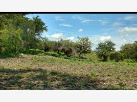 Foto de terreno comercial en venta en la vega 290, alpuyeca, xochitepec, morelos, 19266285 No. 01