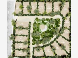 Foto de terreno comercial en venta en la veleta 1, la veleta, tulum, quintana roo, 0 No. 01