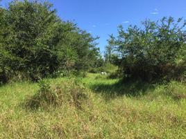 Foto de terreno habitacional en venta en laguna el quelele , mezcales, bahía de banderas, nayarit, 0 No. 01