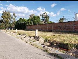 Foto de terreno habitacional en venta en laguna tenerife , suburbana el divisador, salamanca, guanajuato, 0 No. 01