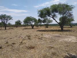Foto de terreno habitacional en venta en lagunillas de mezquite anexa 9, lomas de tejeda ing., tlajomulco de zúñiga, jalisco, 0 No. 01