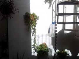 Foto de edificio en venta en  , las flores, aguascalientes, aguascalientes, 0 No. 01