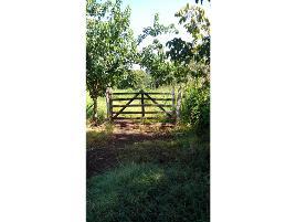 Foto de rancho en venta en  , jesús garcía, escárcega, campeche, 9313302 No. 01