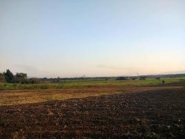 Foto de terreno habitacional en venta en lazaro cardenas oriente 1, las palmas, xochitepec, morelos, 0 No. 01