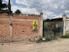 Foto de terreno comercial en venta en lirio 6, san jose del castillo, el salto, jalisco, 0 No. 01