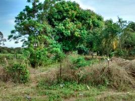 Foto de terreno industrial en venta en llano largo , la zanja o la poza, acapulco de juárez, guerrero, 12430709 No. 02