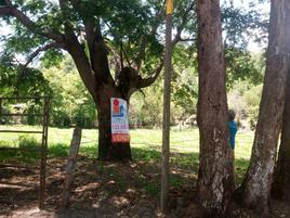 Foto de terreno comercial en venta en lo de lamedo, tepic, nay., mexico , el pichón, tepic, nayarit, 5713621 No. 01