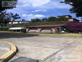 Foto de terreno habitacional en renta en  , loma del padre, cuajimalpa de morelos, df / cdmx, 0 No. 01