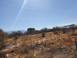 Foto de terreno comercial en venta en  , los ángeles, lerdo, durango, 0 No. 01
