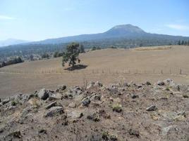 Foto de terreno industrial en venta en los gavilanes 20, santo tomas ajusco, tlalpan, df / cdmx, 0 No. 01