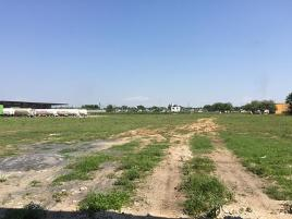 Foto de terreno comercial en renta en los olivos , la retama (ejido), reynosa, tamaulipas, 8618817 No. 01