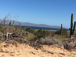 Foto de terreno comercial en venta en  , los planes, la paz, baja california sur, 0 No. 01