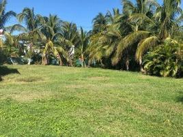 Foto de terreno habitacional en venta en mangos , club de golf la ceiba, mérida, yucatán, 0 No. 01
