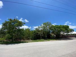 Foto de terreno habitacional en venta en maple con madroño 1, álamos i, benito juárez, quintana roo, 0 No. 01