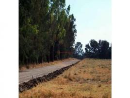 Foto de rancho en venta en  , maravatío de ocampo centro, maravatío, michoacán de ocampo, 18541770 No. 01