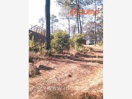 Foto de rancho en venta en mich 16, guáscuaro de múgica, tingüindín, michoacán de ocampo, 9739144 No. 01