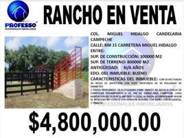 Foto de rancho en venta en miguel hidalgo y costilla 200, miguel hidalgo y costilla, candelaria, campeche, 11502791 No. 01