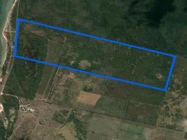 Foto de terreno habitacional en venta en  , minas, campeche, campeche, 0 No. 01