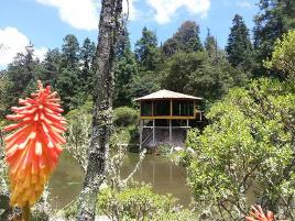 Foto de terreno habitacional en venta en mineral del monte 3000, residencial del bosque, pachuca de soto, hidalgo, 0 No. 01