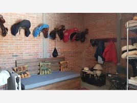 Foto de rancho en venta en monte de la cruces 548, san lorenzo acopilco, cuajimalpa de morelos, df / cdmx, 12487980 No. 03