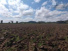 Foto de terreno comercial en venta en morcillo 100, morcillo, durango, durango, 0 No. 01