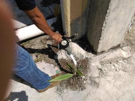 Foto de terreno habitacional en renta en  , mundo maya, carmen, campeche, 0 No. 01
