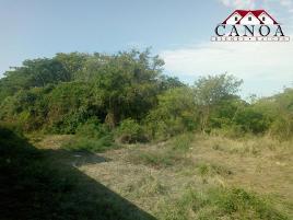 Foto de terreno habitacional en venta en netzahualcoyotl 1, mezcales, bahía de banderas, nayarit, 0 No. 01