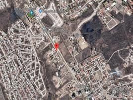 Foto de terreno habitacional en renta en  , nuevo león, león, guanajuato, 19989476 No. 01