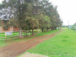 Foto de rancho en venta en nuevo rodeo , nuevo rodeo, tzintzuntzan, michoacán de ocampo, 0 No. 01