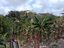 Foto de terreno industrial en venta en  , obrera, papantla, veracruz de ignacio de la llave, 0 No. 01