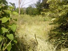 Foto de terreno habitacional en venta en panorama 15, lomas de cocoyoc, atlatlahucan, morelos, 0 No. 01