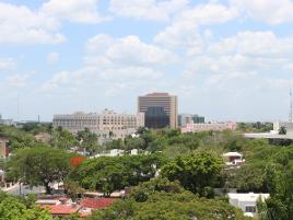Foto de edificio en venta en  , paseo de montejo, mérida, yucatán, 0 No. 01