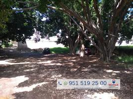 Foto de terreno comercial en renta en pensamientos , reforma, oaxaca de juárez, oaxaca, 5966047 No. 01