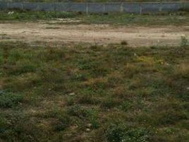 Foto de terreno industrial en renta en  , pesquería, pesquería, nuevo león, 0 No. 01