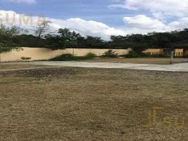 Foto de terreno habitacional en venta en  , petrolera, altamira, tamaulipas, 0 No. 01