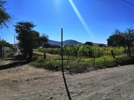 Foto de terreno industrial en venta en pie de gallo 100, santa rosa de jauregui, querétaro, querétaro, 0 No. 01