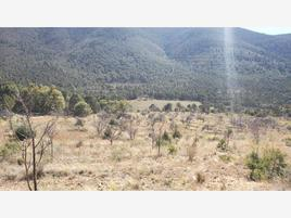 Foto de terreno comercial en venta en  , piedra blanca (el ranchito), arteaga, coahuila de zaragoza, 0 No. 01