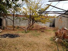 Foto de terreno comercial en venta en plan de ayala , ejido guadalupe victoria, oaxaca de juárez, oaxaca, 20097776 No. 01