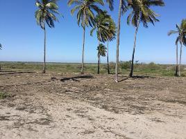 Foto de terreno habitacional en venta en playa el colorado , rancho nuevo, santiago ixcuintla, nayarit, 0 No. 01