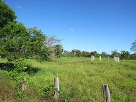 Foto de terreno comercial en venta en plutarco elias calles 150, playas del rosario, centro, tabasco, 0 No. 01