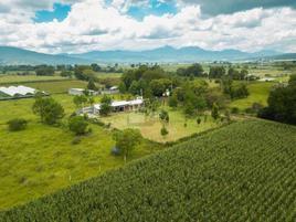 Foto de rancho en venta en potrero tacambarillo , santiago undameo, morelia, michoacán de ocampo, 0 No. 01
