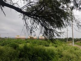 Foto de terreno habitacional en renta en principal , san luis de la cruz, silao, guanajuato, 18038444 No. 01