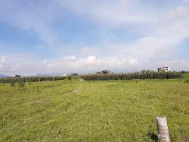 Foto de terreno industrial en venta en privada cruz nente gomez 100, san juan de las huertas, zinacantepec, méxico, 0 No. 01