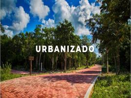 Foto de terreno habitacional en venta en privada kitam che´ , ciudad chemuyil, tulum, quintana roo, 0 No. 02