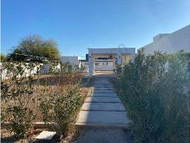 Foto de terreno habitacional en renta en profesora rode m. de landeros 667, rivera campestre, mexicali, baja california, 11613035 No. 01