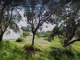 Foto de terreno habitacional en venta en prolongación de la quinta , valle del maíz, san miguel de allende, guanajuato, 0 No. 01