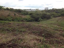 Foto de terreno comercial en venta en prolongación de urbano castañeda 0, sabina, centro, tabasco, 0 No. 01