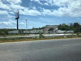 Foto de terreno comercial en renta en  , puerto morelos, benito juárez, quintana roo, 10612378 No. 01